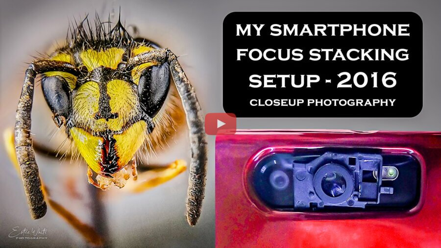 My Focus Stacking Setup for Closeup Photography from 2016 | Focus Stacking Mobile Photography
