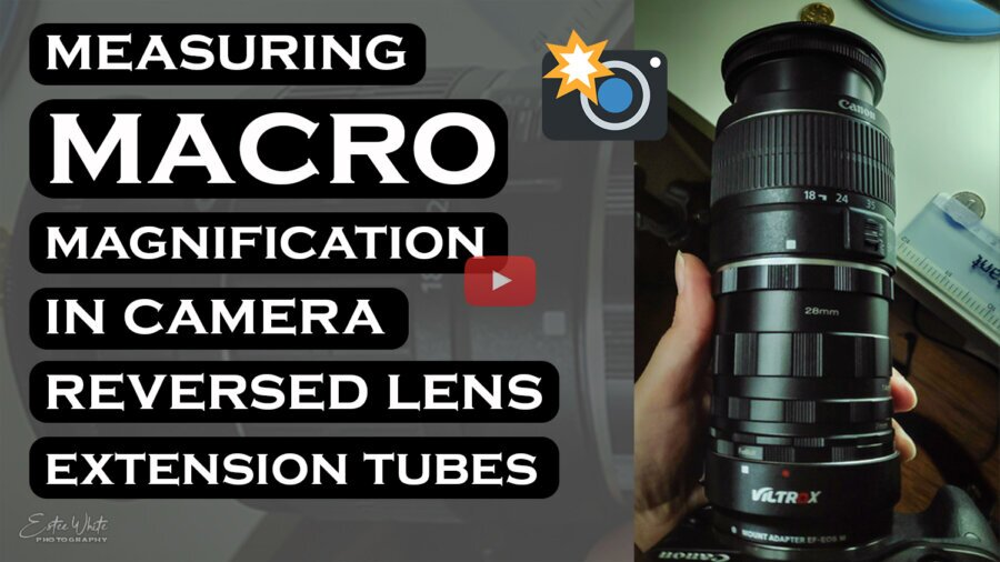 How to Measure Macro Magnification in Camera | Macro Photography