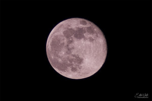 pink supermoon full moon lunar photography night shy