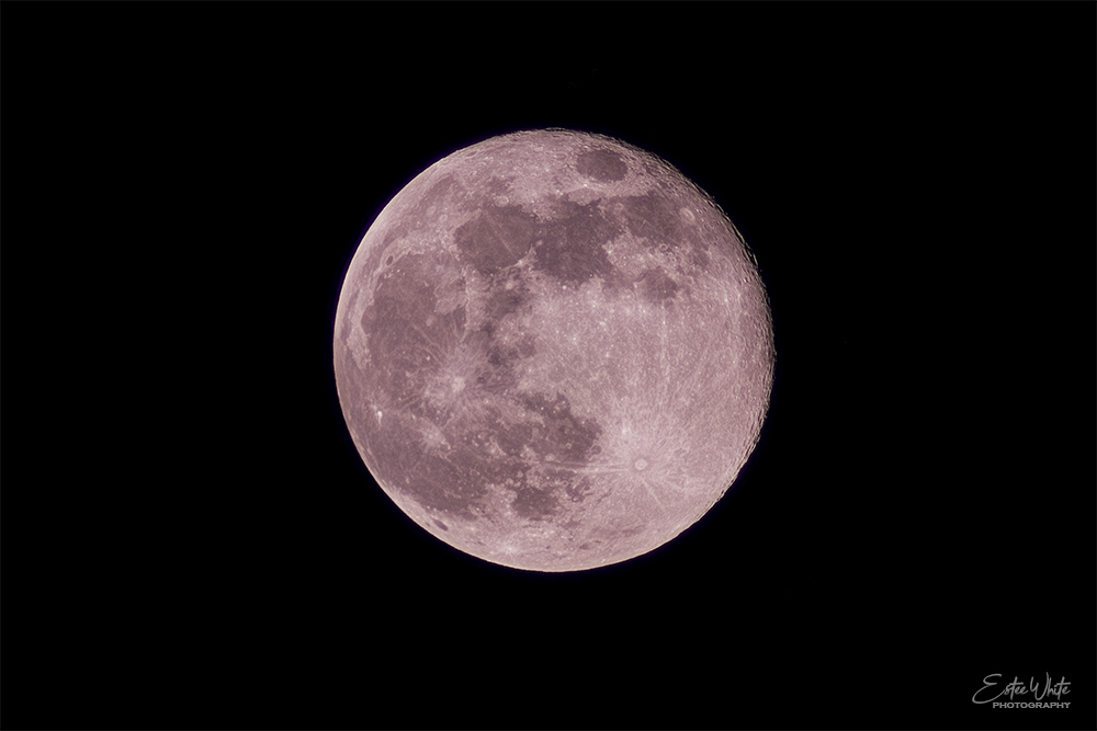 Pink Supermoon | Focus Stacked - 26 Frames | Canon M6 @800mm | Estee White Photography | 08 Apr 2020