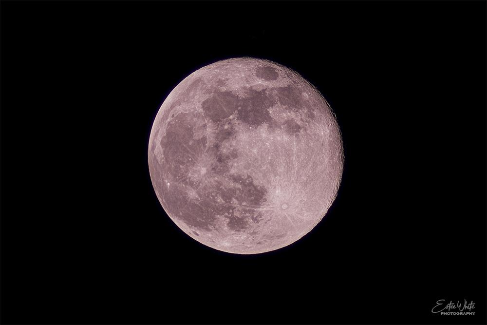 pink supermoon full moon lunar photography night shy