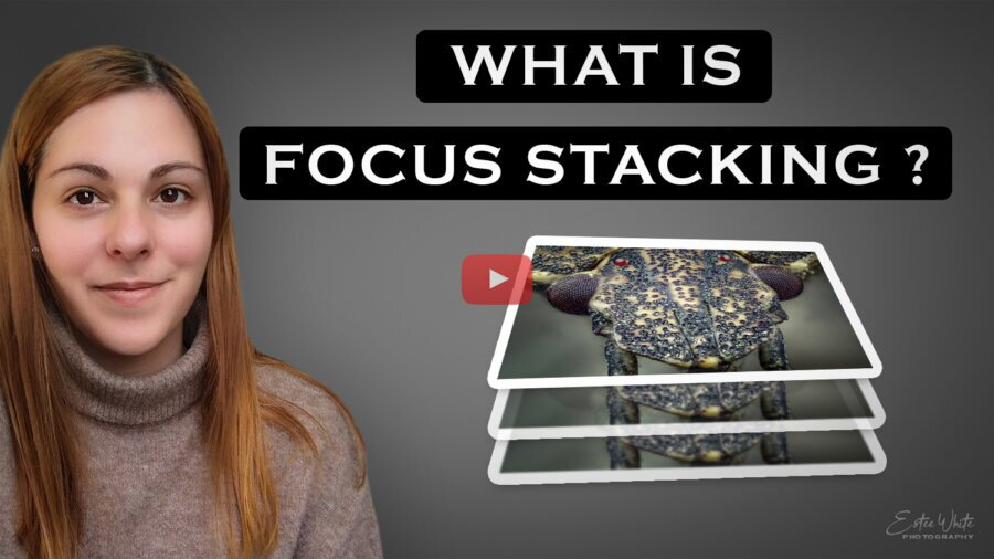 What is Focus Stacking and Does it Work Only for Macro Photography?