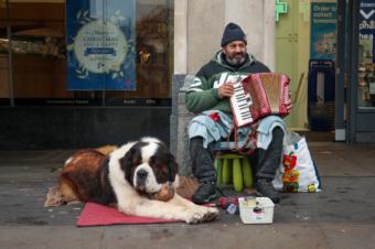london street musician with st bernard dog