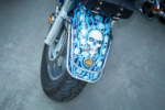 blue eyed scull on a bike site