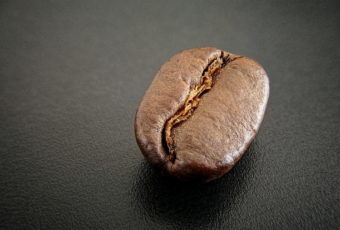 coffee bean extreme closeup focus stacked